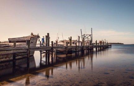 Tarpon Dock